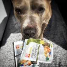 BUY HONEST KITCHEN AND HELP THE STAND UP FOR PITS FOUNDATION!!